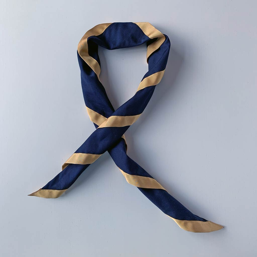 Scout scarf blue and gold.